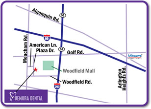 Woodfield mall の西側に左上図のビルと同じ様式のビルが3棟ございます。当院は999 Plaza Driveのビル内の350号室です。